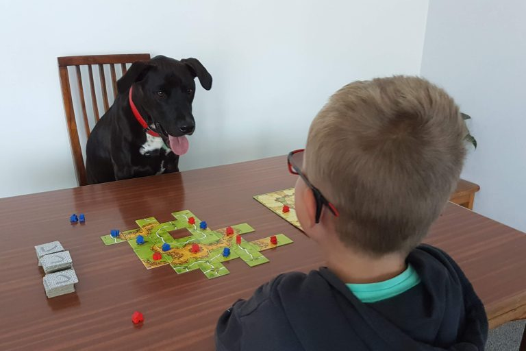 Two Player Board Games for Kids - Mr Cosmo the dog and a kid play a two player board game